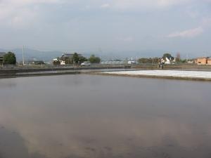 S170330水の入った西村田んぼ