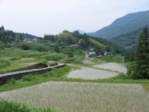 s170530溜井の田んぼ1