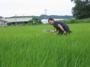 S170612農協の竹内さんが葉色板で比べる