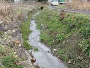 S190214山から流れてくる小川