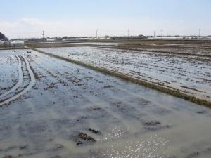 S190317村上田んぼに水が入る